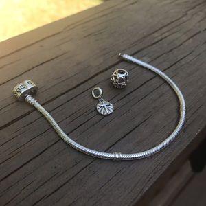 Pandora and chameleon jewelry